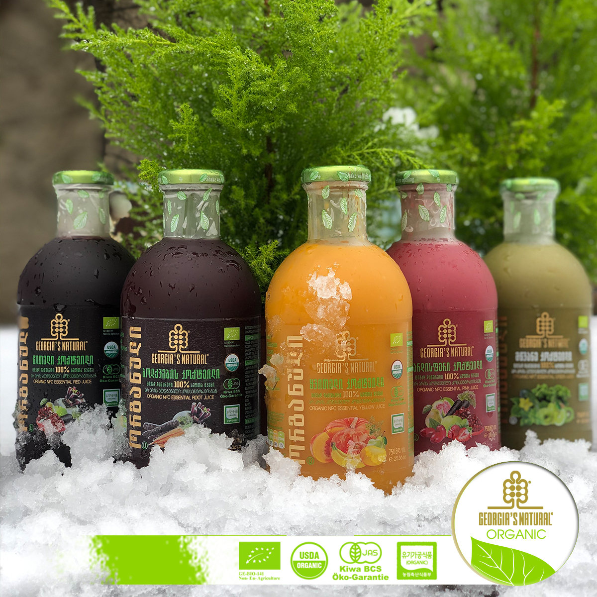 GEORGIA'S NATURAL ESSENTIAL JUICE SIGNATURE LINE / 100% ORGANIC COLD PRESSED JUICE FUSSION